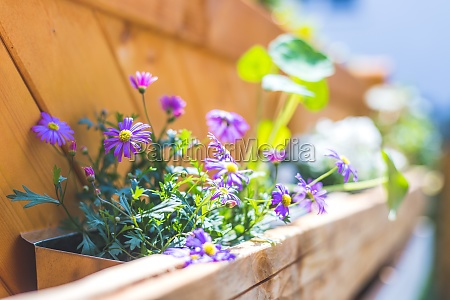 do it yourself flower box in