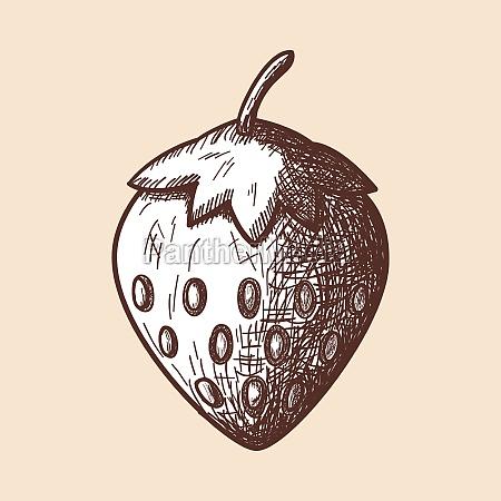 icon of strawberry