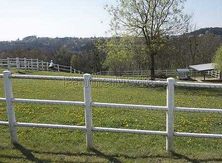 garden fence around a garden
