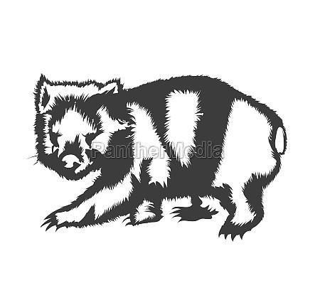 wombat silhouette