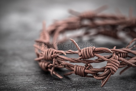 barbed wire crown of thorns macro