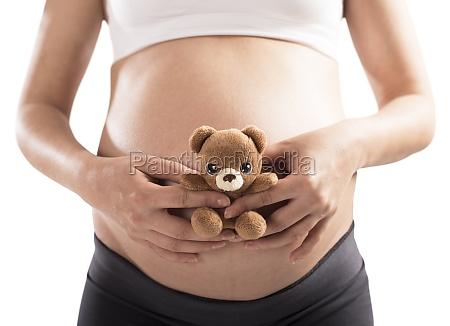 teddy bear pregnant