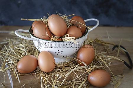 brown chicken eggs in white colander