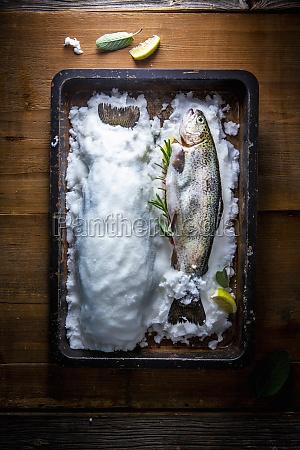 trout in a salt crust