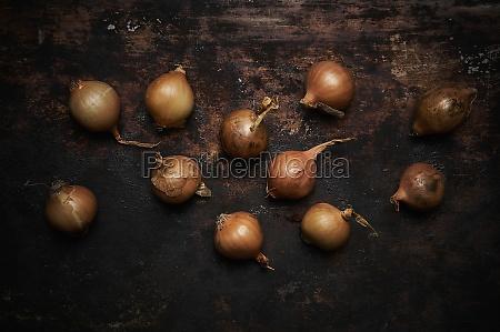 onions on dark wooden background