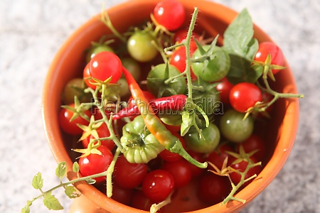 vine tomatoes and chilli peppers in