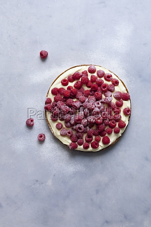 raspberry tart with vanilla cream