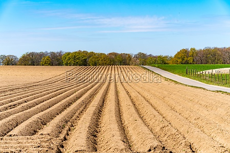 view of the plowed fields in