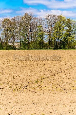 green farmers field rural landscape