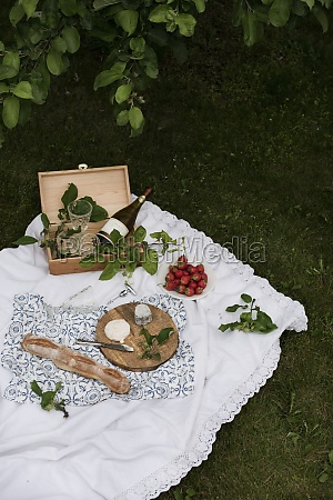 a picnic with cheese baguette strawberries