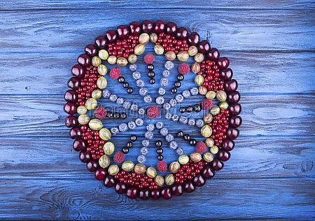 art food mandala in hape of