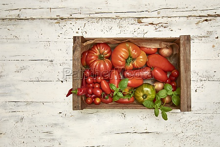 various types of tomatoes in a