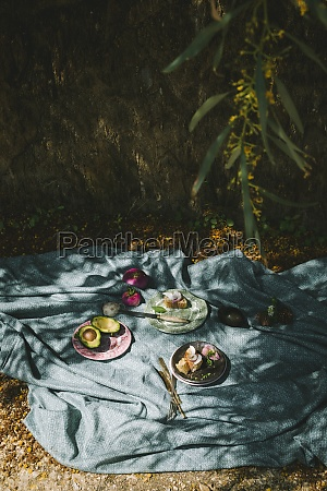 a picnic under a tree with