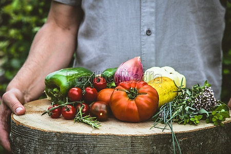 organic vegetables farmers hands with