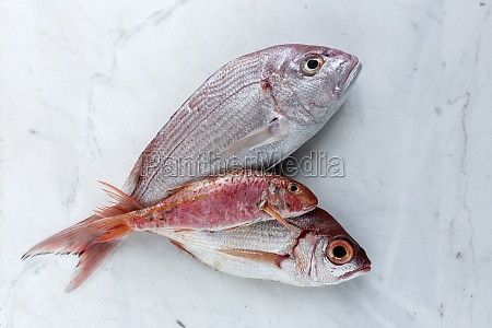 three uncooked red fish lying on