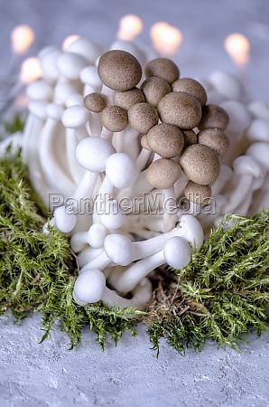 brown and white enoki mushrooms and