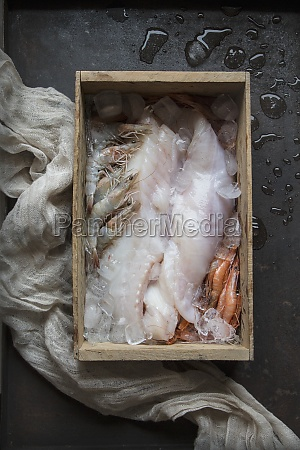raw fish and different seafood in