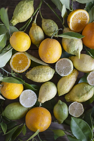 various organic citrus fruit with leaves