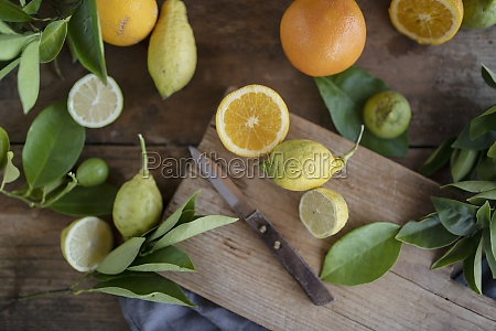 organic oranges and lemons with a