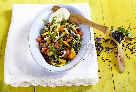 lentil salad with goats cheese vegetables