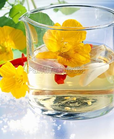 homemade vinegar with nasturtium flowers garlic