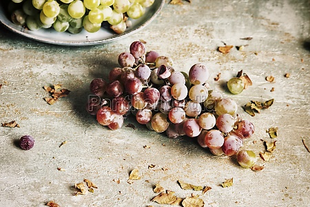 still, life, with, grapes, and, autumn - 29887194