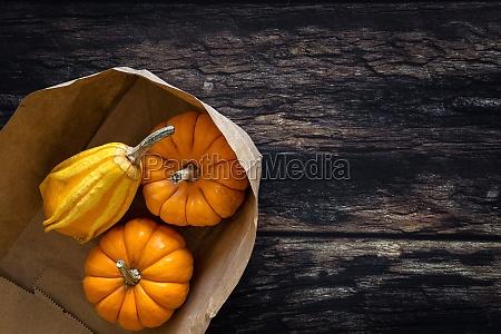 halloween decoration on dark background