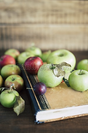 bunch of ripe apples and small
