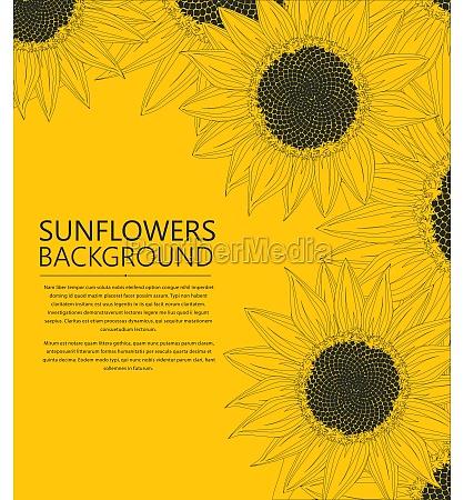 sunflowers text card