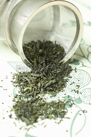 tamaryokucha imperial green tea from japan