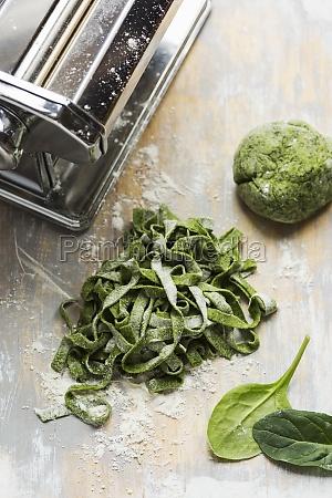spinach pasta dough homemade cut into