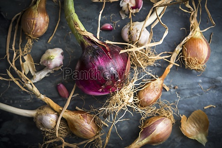 freshly, picked, shallots, and, red, onions - 29891527