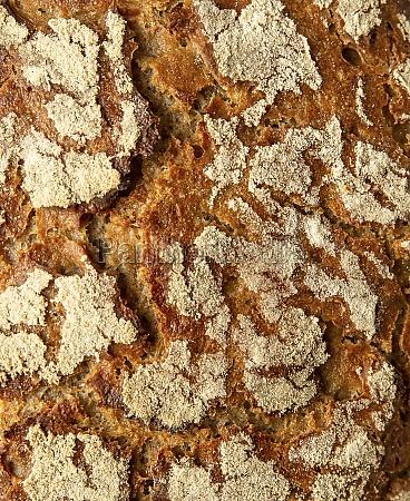 a crusty loaf of bread close