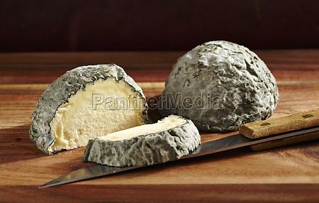 blue brain egg cows milk cheese