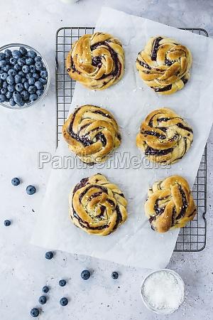 blabarsbullar blueberry snails from sweden