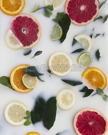 colorful segments of orange lemon lime