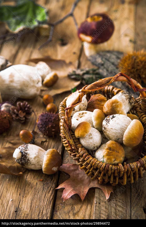 autumn, still, life, with, mushrooms - 29894472