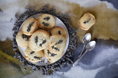 sables with lavender flowers