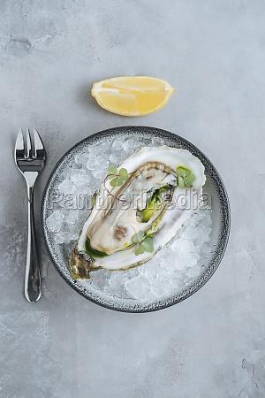 lemon on oysters on ice cube