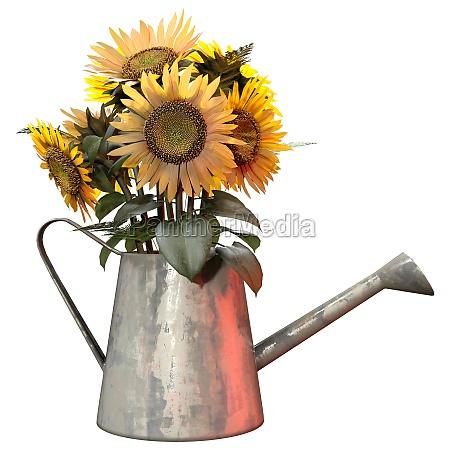 3d rendering sunflowers on white