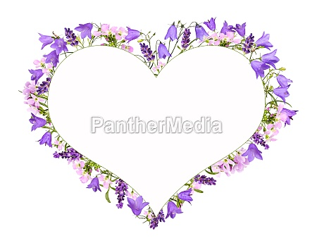 bellflowers and meadow flowers as a
