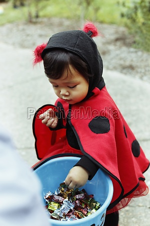 girl wearing ladybird costume with trick