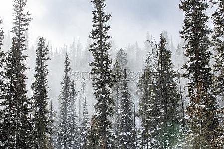 united states idaho sun valley snowy