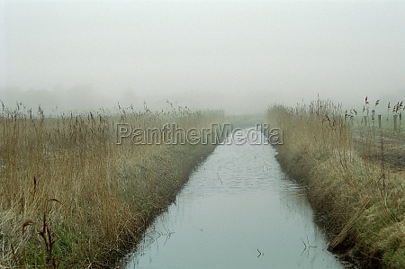 landscape with fog on sylt