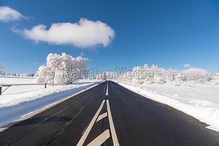 an empty road in winter leading