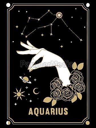 aquarius card zodiac horoscope illustration