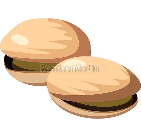 pistachio nuts icon cartoon style