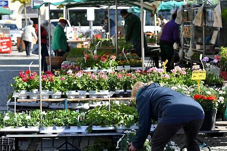 wochenmarkt in gmunden am traunsee OEsterreich