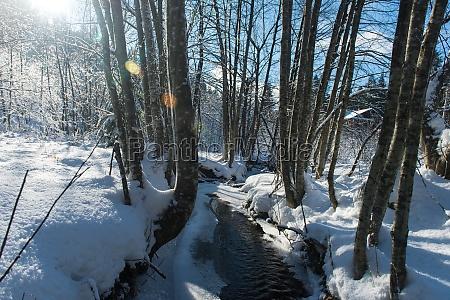 winter creek ice