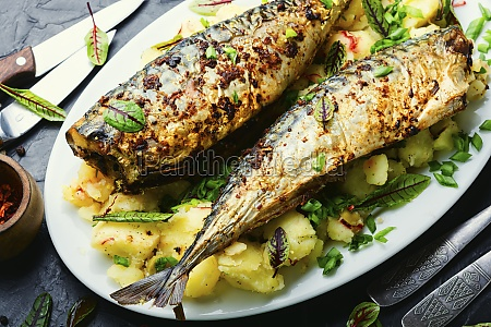 baked scomber with potatoes copy space